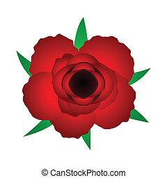 rose, rotes