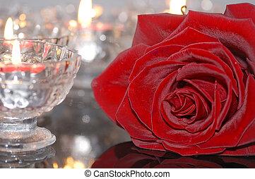 rose, rotes , kerzen