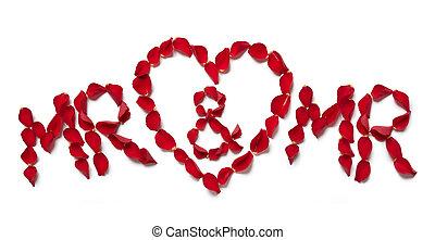 rose rouge, pétales, orthographe, m., et, m.