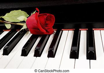 rose rouge, sur, piano