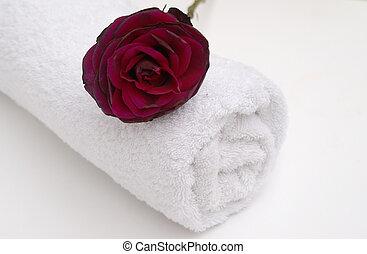 rose, rouges, spa