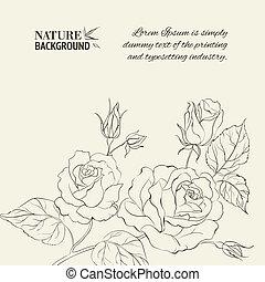 rose., silhouette