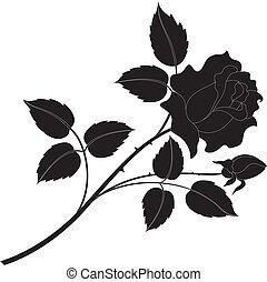 rose, silhouettes, fleur