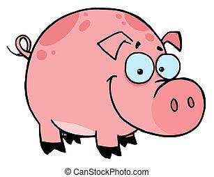 rose, sourire heureux, taches, cochon