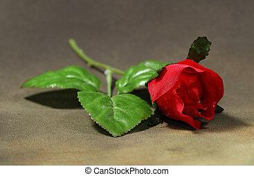 rose, tissu