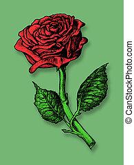 rose, unique, rouges