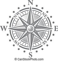 rose, vecteur, compas