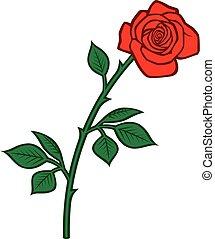 rose, vecteur, rouges, illustration