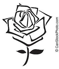 rose, vektor