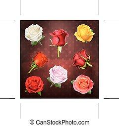 rose, vettore, icone