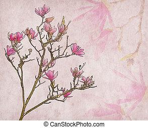 rose, vieux, magnolia, papier, fond, fleurs