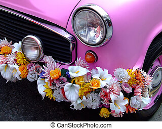 rose, voiture, devant