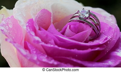 Desire, Love and Valentine's Day - Rose water drops ring...