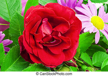 Rose with a variety of flowers