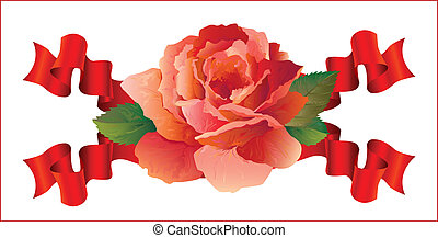 rose with ribbons