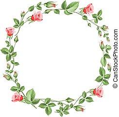 Rose wreath isolated on white.