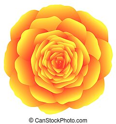 Rose Yellow Orange - Orange marigold, carnation or rose on...