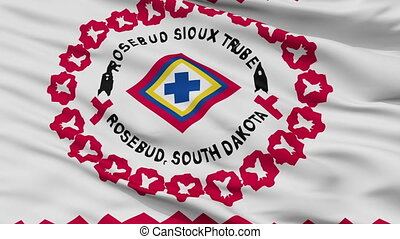 Rosebud Reservation Indian Flag Closeup Seamless Loop -...