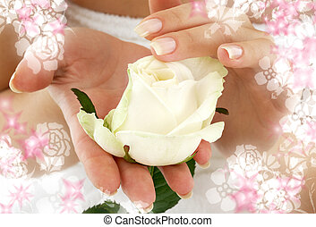 rosebud surrounded by flowers - beautiful woman hands with...