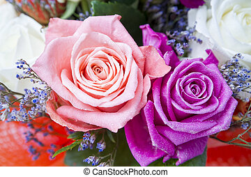 Rosebuds closeup. Colorful bouquet. Background of flowers
