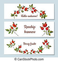 Rosehip banners set illustration - Rosehip banners set with...