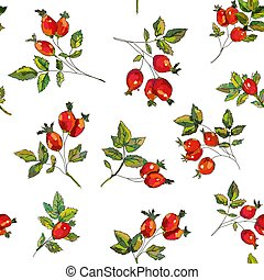 Rosehip seamless pattern illustration