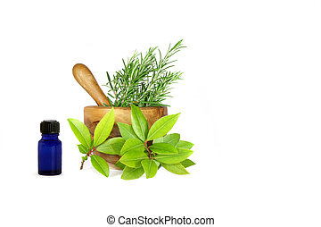 Rosemary and Bay Essential Herbs