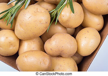 Rosemary and Potatoes in a box on white background