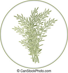 Rosemary Bunch - A couple of twigs of rosemary. Spice herbs...