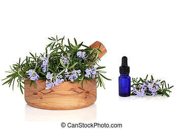 Rosemary Herb and Essence - Rosemary herb with flowers in an...