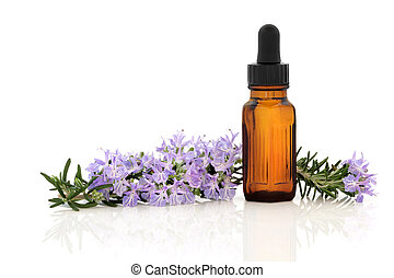 Rosemary herb flower and leaf sprig with aromatherapy essential oil glass bottle, isolated over white background.