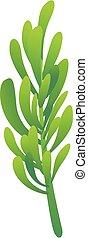 Rosemary herb icon, cartoon style