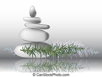 Rosemary herb leaves with stones, vector illustration