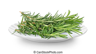 rosemary in a plate on white background