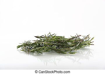 Rosemary isolated in white background