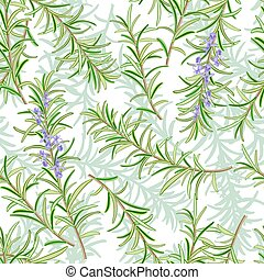 Rosemary or Rosmarinus officinalis. Leaves and flowers. Seamless pattern. Vector illustration.