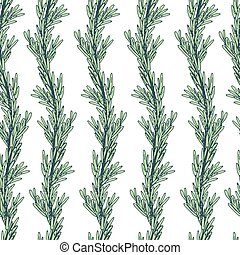 Rosemary seamless pattern. Branches in vertical rows.