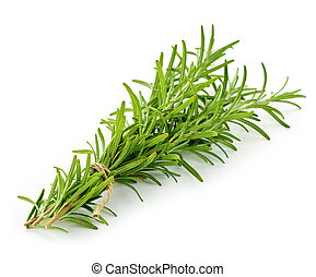 Rosemary sprigs tied in bundle isolated on white background