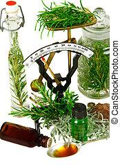 (rosemary, zioła, genus), tło, medycyna, biały, santolina,...