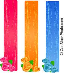 rosen, banner, grunge, drei