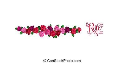 rosen, dekor, umrandungen