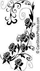 rosen, design, schwarz