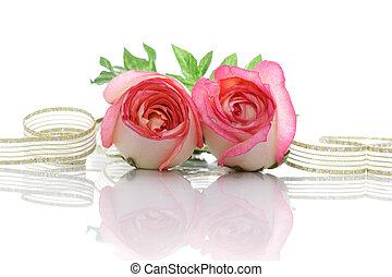 rosen, und, geschenkband