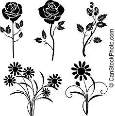 roser, vektor, silhuet, daisies