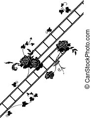 roses and film strip background