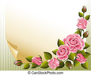 Roses background - pink roses and paper