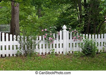 roses, barrière