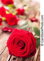 roses, bois, rouges