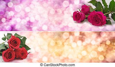 Roses Bokeh Banner