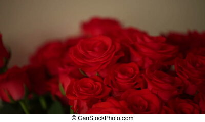 roses, bouqet, rouges